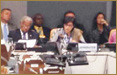 "NCD Alliance, Government of Sweden and CARICOM panel discussion on the sidelines of the UN high level review on NCDs on ""delivering solutions, accountability and results"", New York, USA. July 11, 2014"